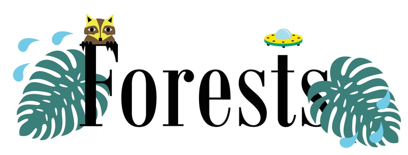 Forest, mi proyecto de ilustración 1