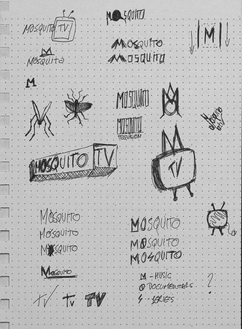 Mosquito Tv. Creación de un canal de televisión online. 3