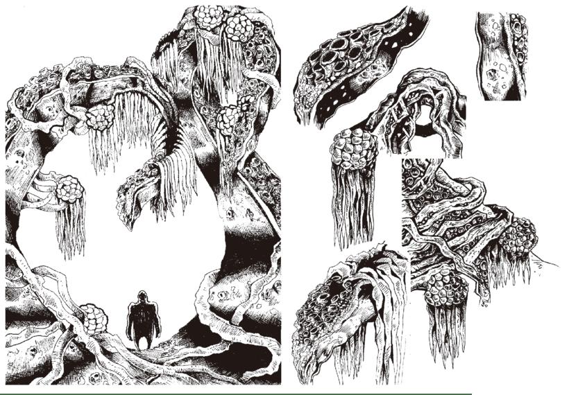 Concept Art - Plantas 'mu' raras. 0