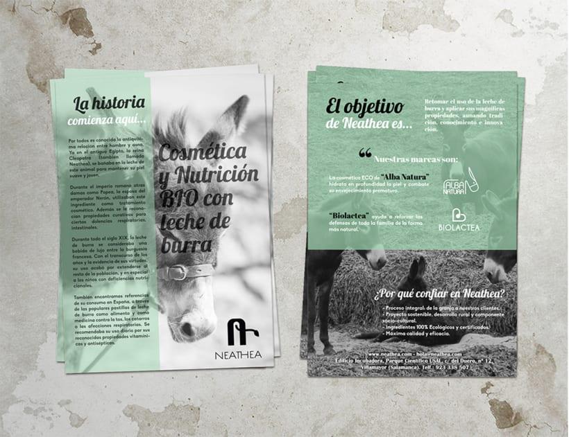 Logotipos, branding, diseño de flyers y de packagings que conforman la empresa NEATHEA (Alba Natura y Bioláctea) 1