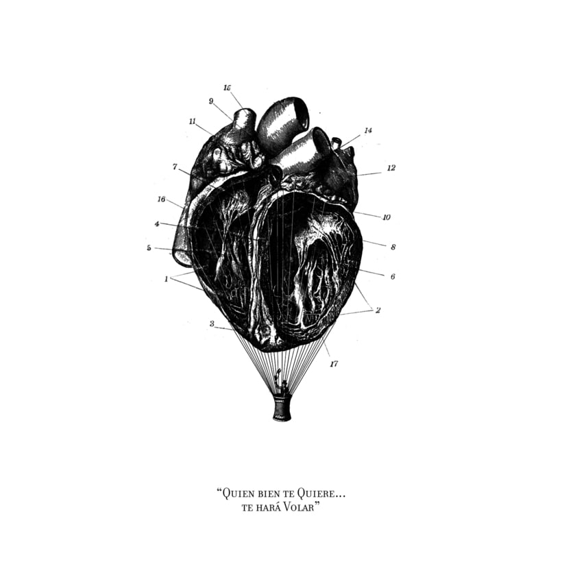 Cardiografia 1