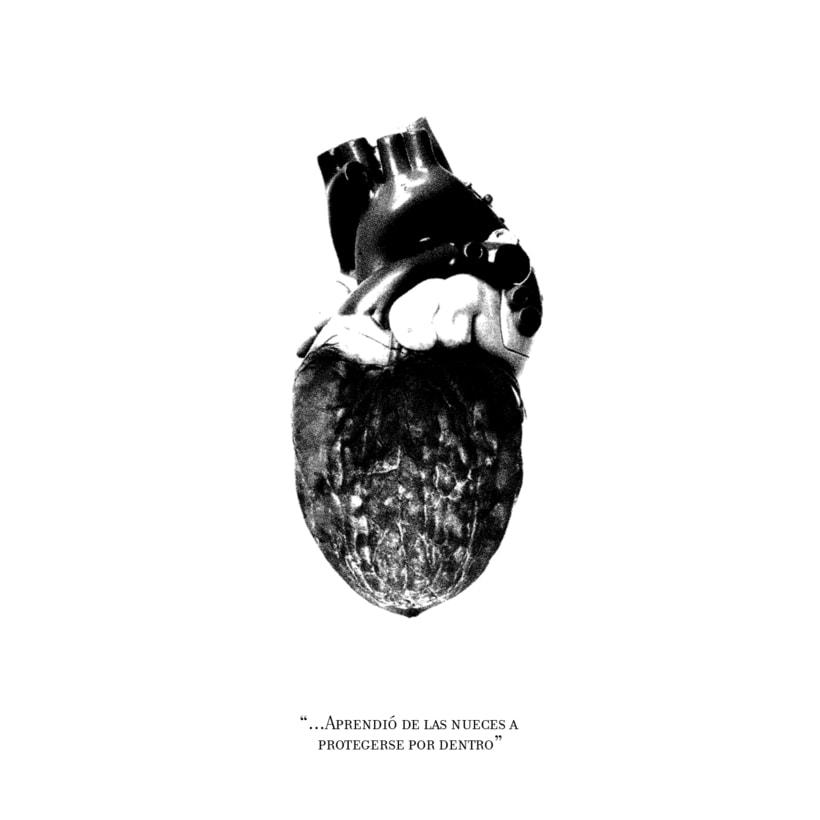 Cardiografia 7
