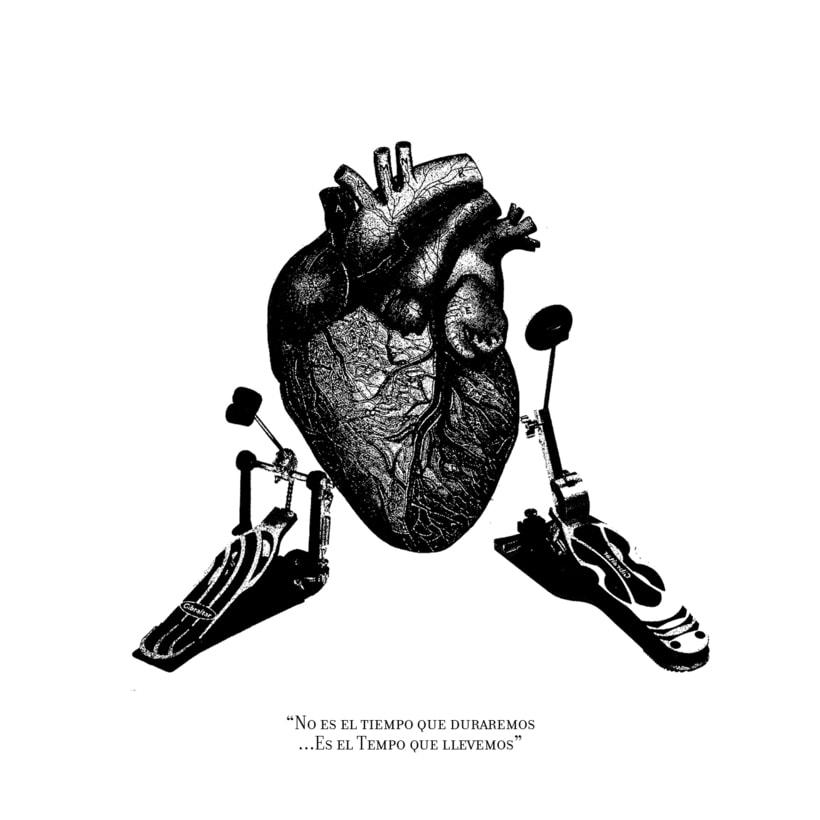 Cardiografia 8