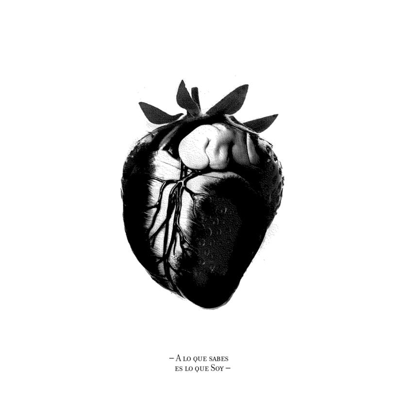 Cardiografia 12