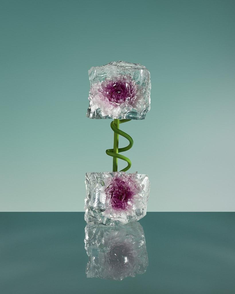 Freezing Flowers  2