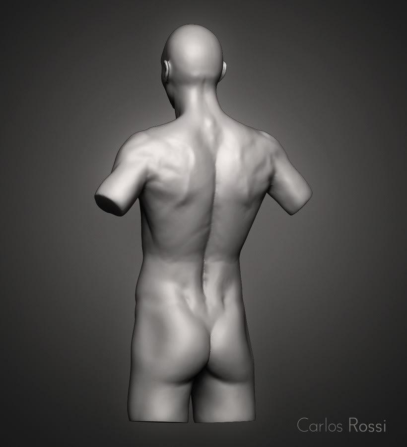 Practice torso man 2