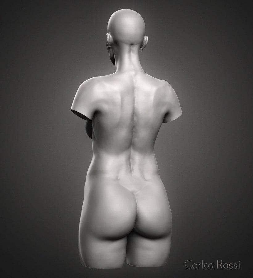 Practice torso woman 2