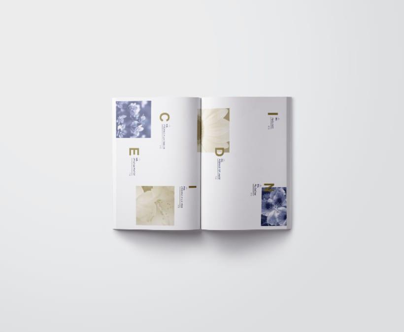 Mi Proyecto del curso: Introducción al Diseño Editorial/ Filomena 0
