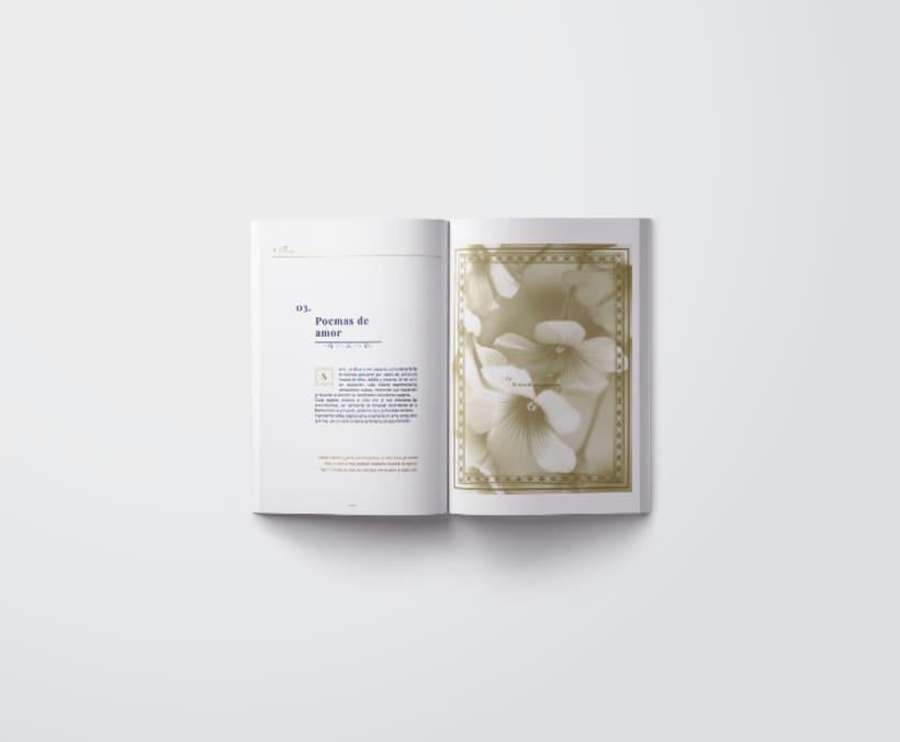 Mi Proyecto del curso: Introducción al Diseño Editorial/ Filomena 3