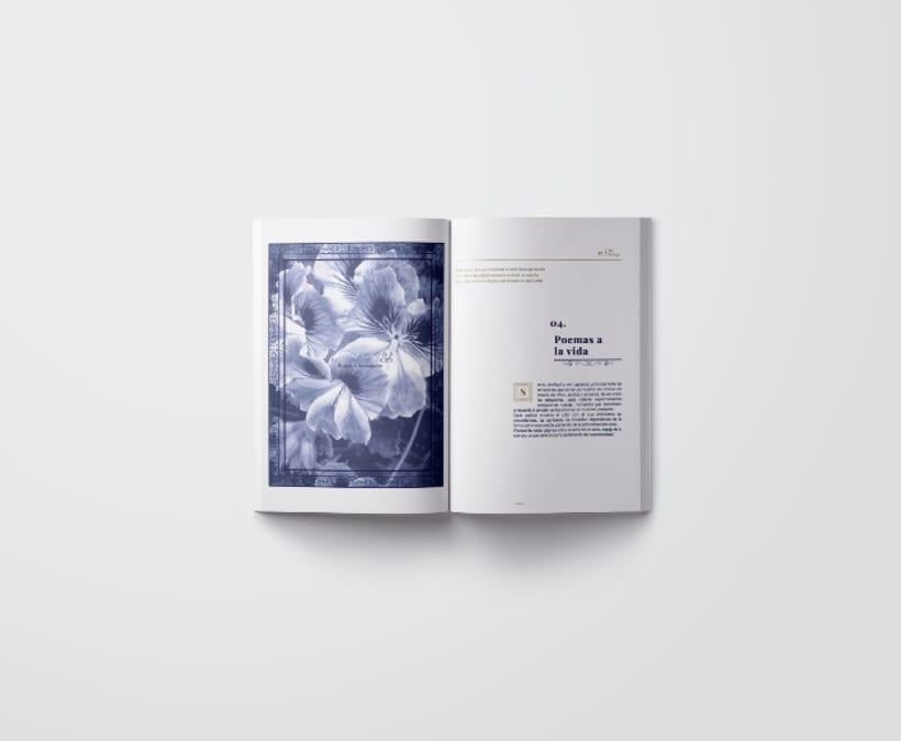 Mi Proyecto del curso: Introducción al Diseño Editorial/ Filomena 4