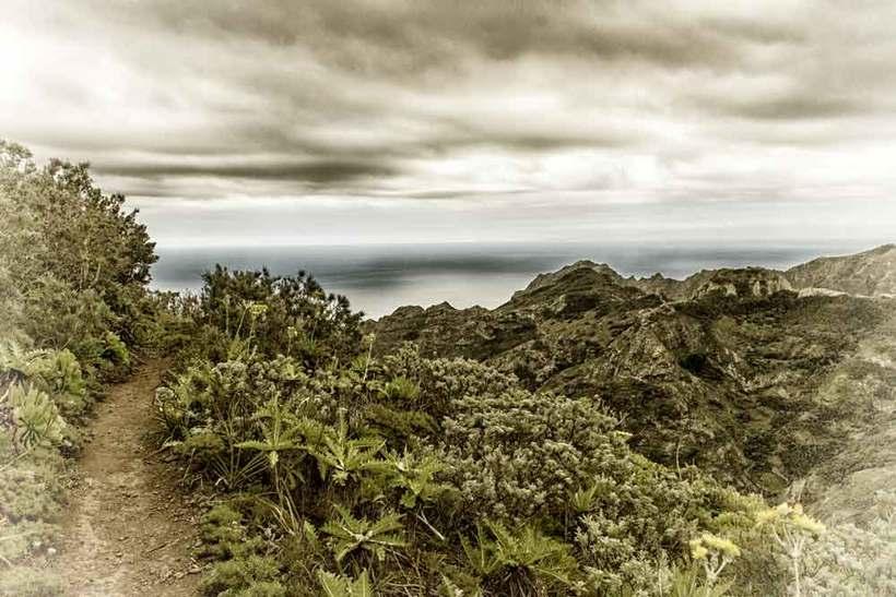 Tenerife de Piazzi Smyth © Guillermo Domeque 2017 0