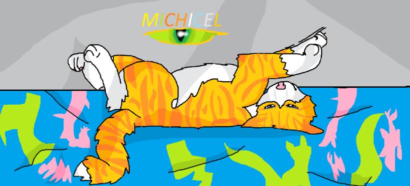 este es mi gato llamado Michicel  -1