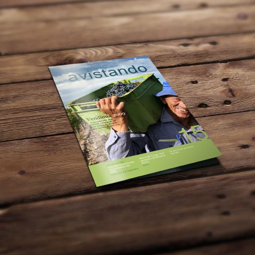 Diseño de revista institucional Avistando -1
