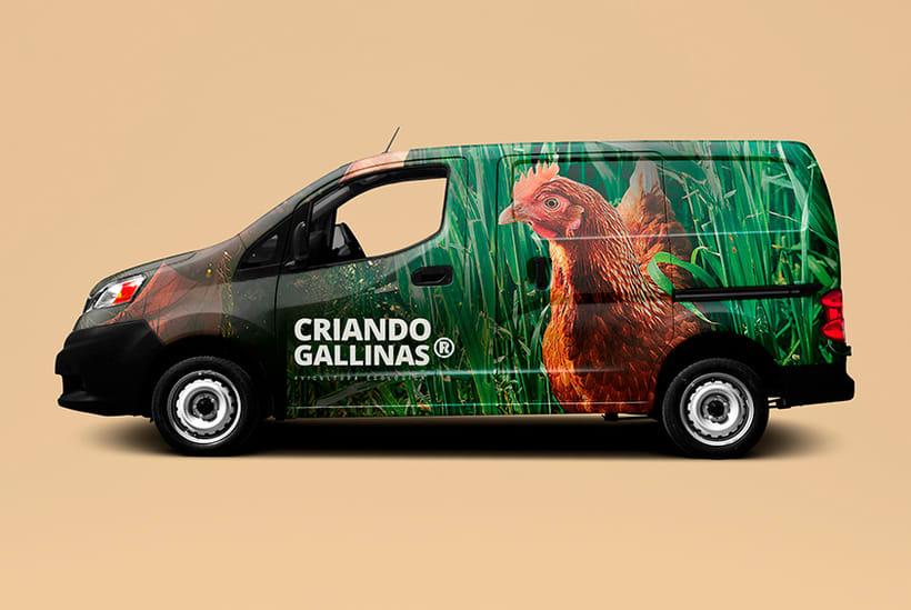 Criando Gallinas Avicultura Ecológica 10