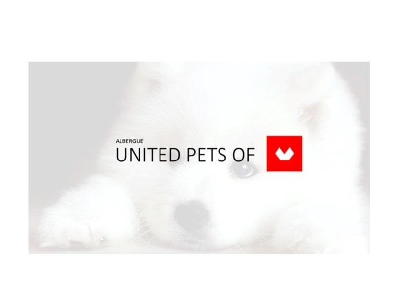 perroterapia.com ¿sabías que los perros pueden tener efectos terapéuticos sobre las  personas? -1
