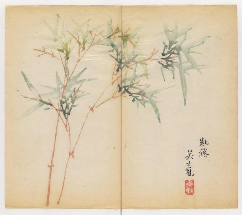 Explora el cuaderno impreso a color más antiguo del mundo 3