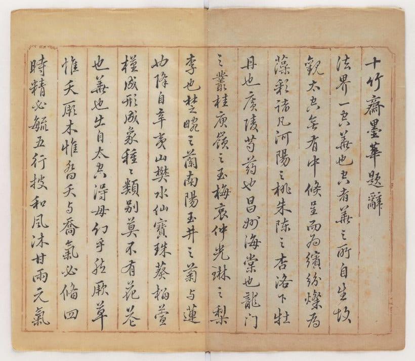 Explora el cuaderno impreso a color más antiguo del mundo 5