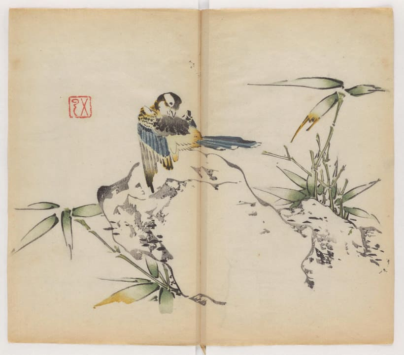 Explora el cuaderno impreso a color más antiguo del mundo 8