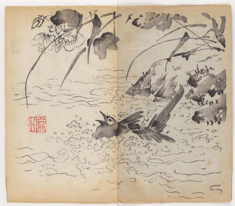 Explora el cuaderno impreso a color más antiguo del mundo 9