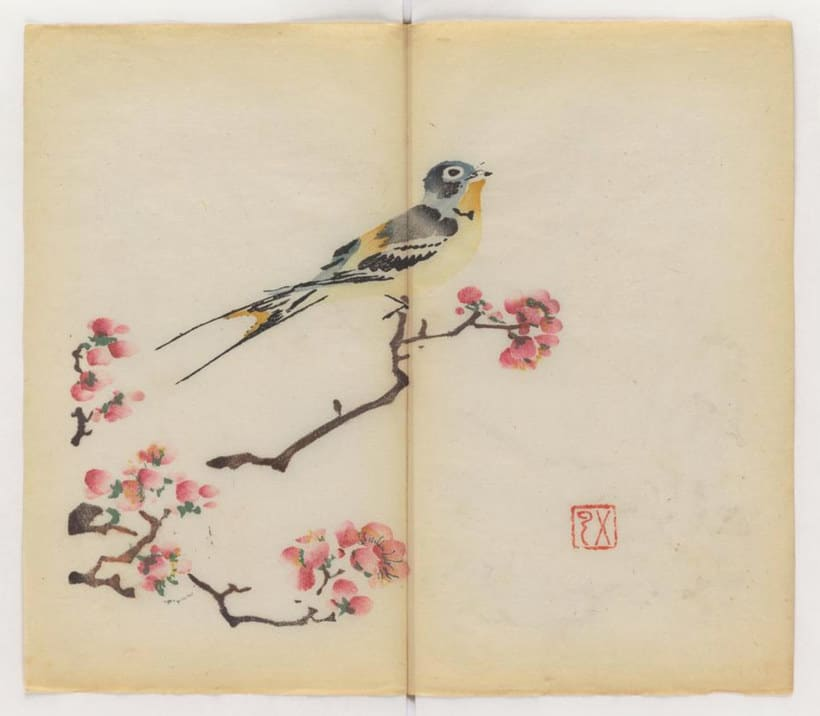 Explora el cuaderno impreso a color más antiguo del mundo 10