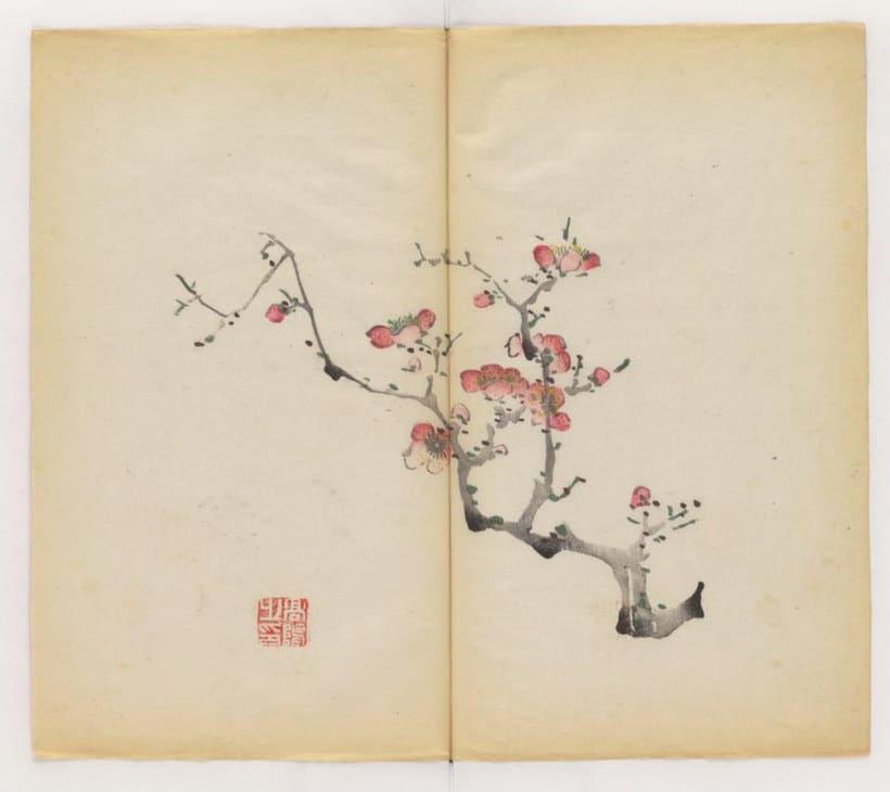 Explora el cuaderno impreso a color más antiguo del mundo 11