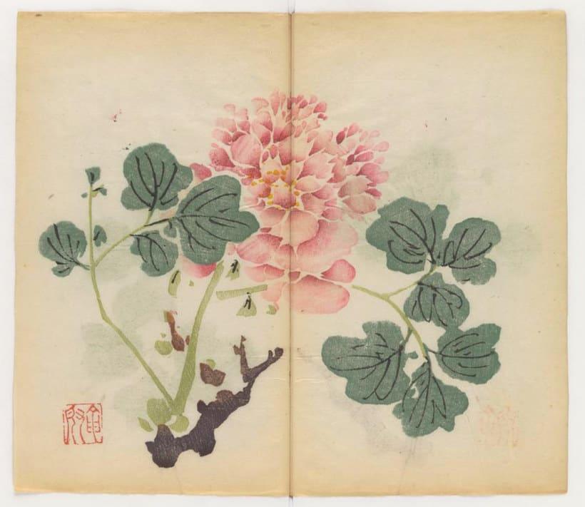 Explora el cuaderno impreso a color más antiguo del mundo 14