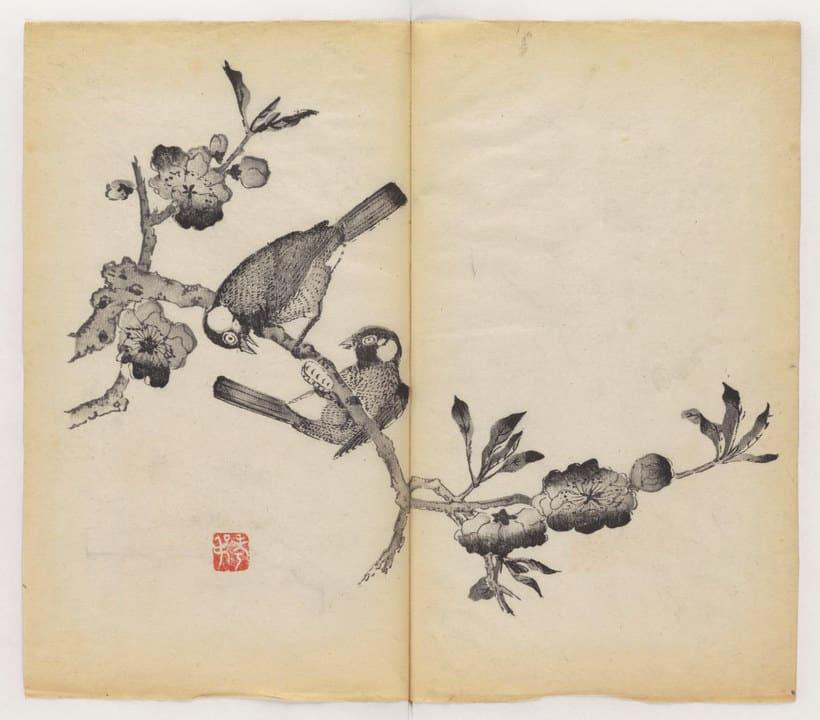 Explora el cuaderno impreso a color más antiguo del mundo 18