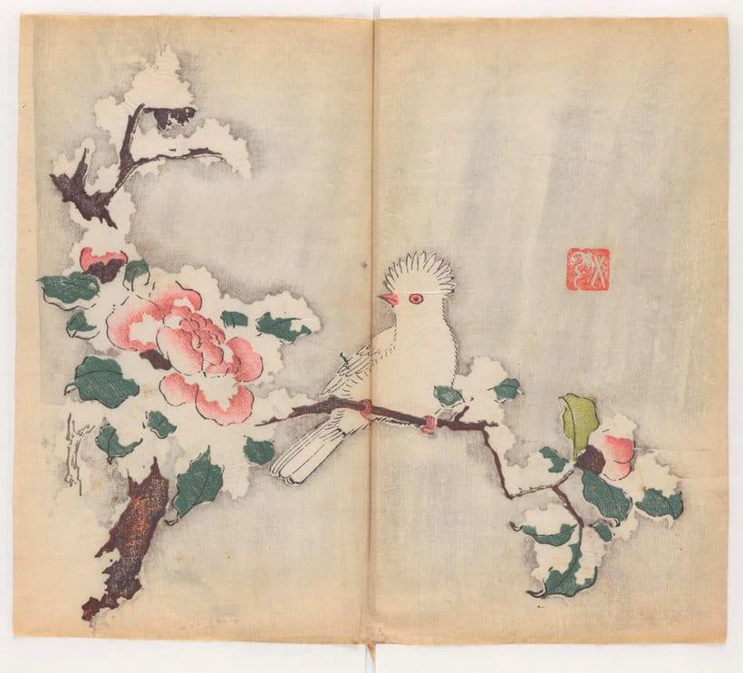 Explora el cuaderno impreso a color más antiguo del mundo 1