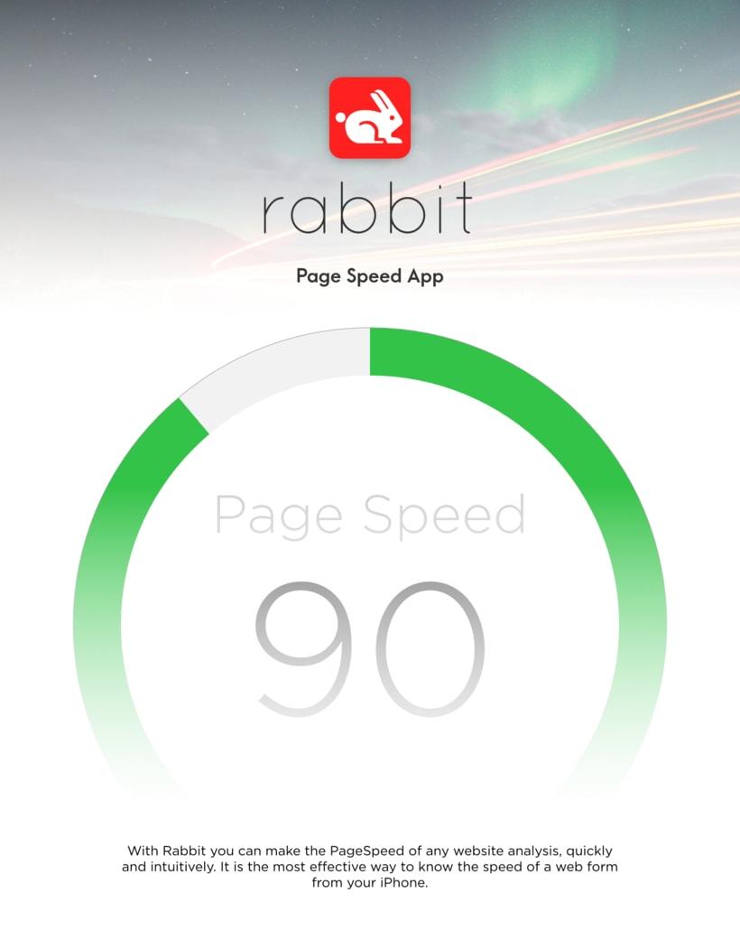Rabbit Page Speed App -1