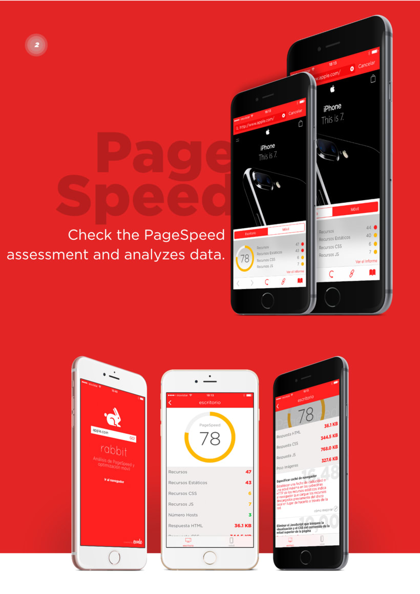 Rabbit Page Speed App 1