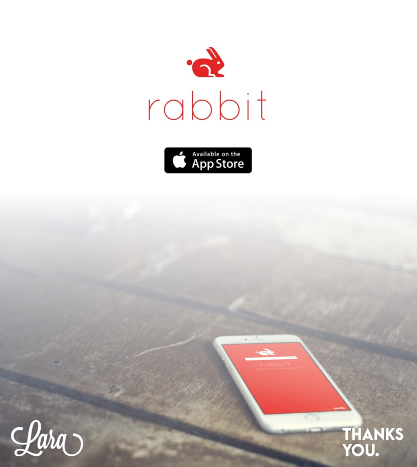 Rabbit Page Speed App 5