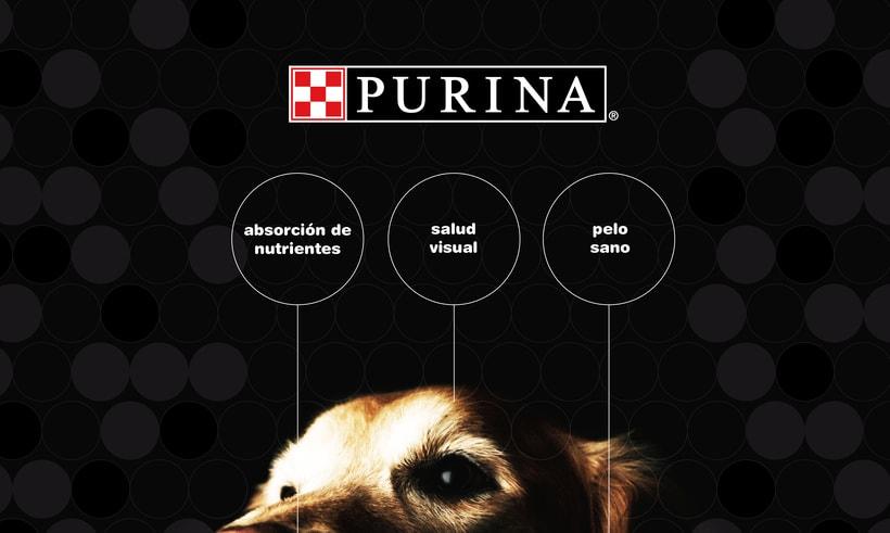 Packaging para comida de perros 2