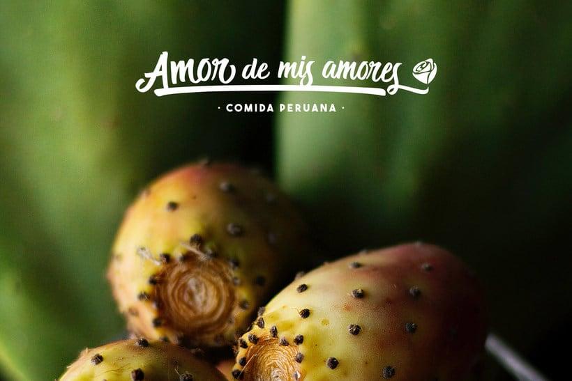 Amor de mis Amores 4