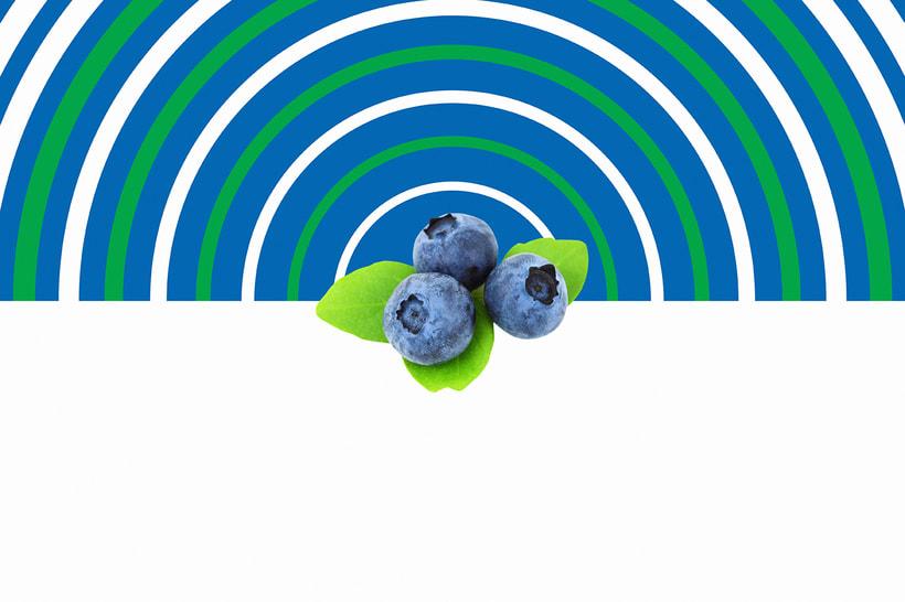 Fruberries 8