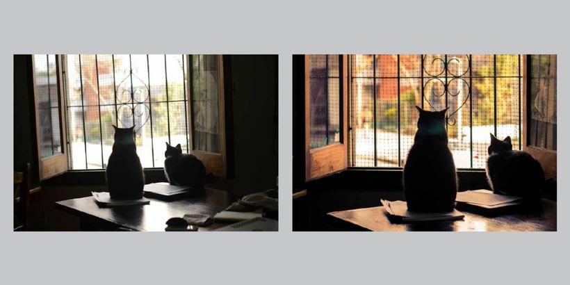 Proyecto - Revelado de archivos RAW con Lightroom 6