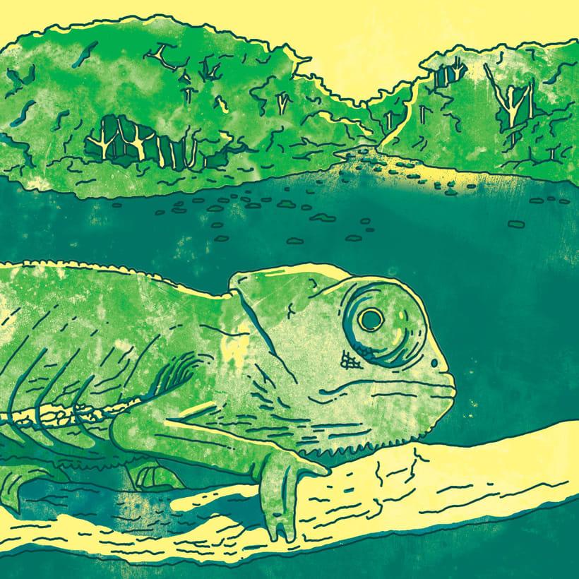Camaleón en la selva 1