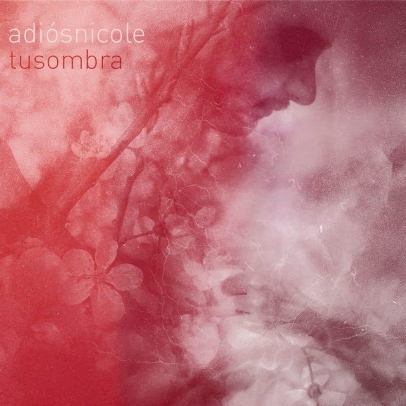 Proyecto: Album Cover para Adiós Nicole -1