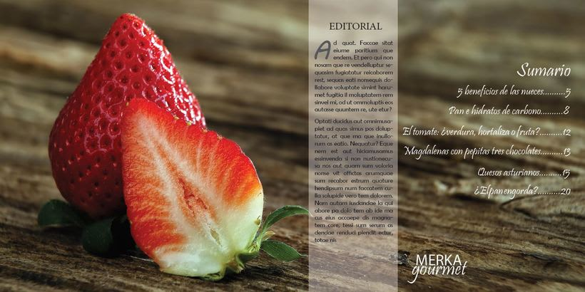 Revista gastronómica  2