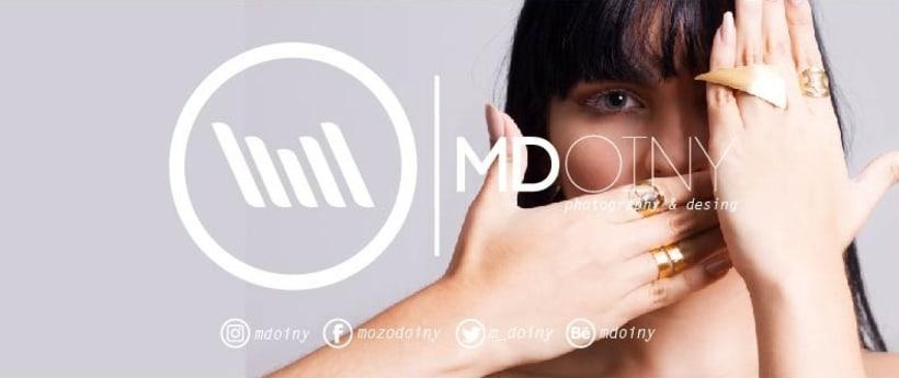 LogoTipo - MDoiny 2