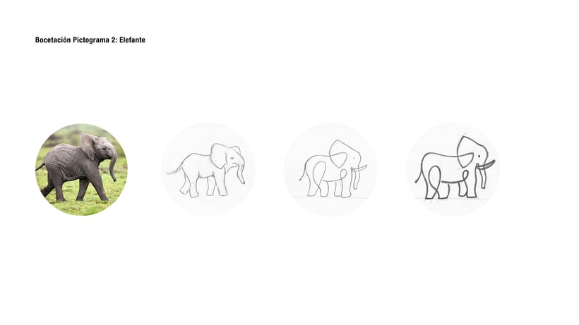 Animals Pictograms Concept (Student Project) 8