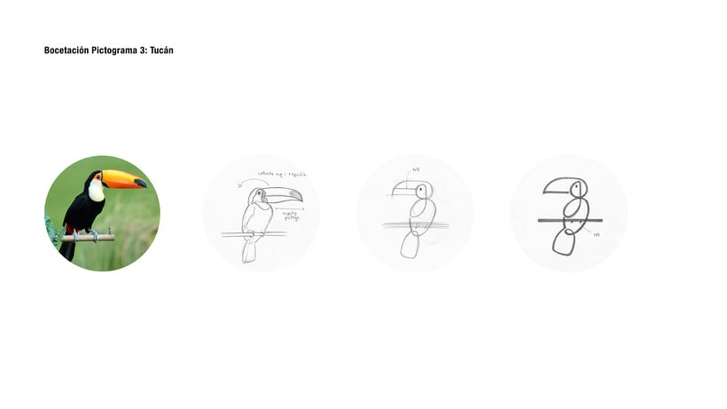 Animals Pictograms Concept (Student Project) 11