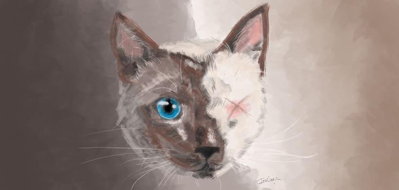 Pintura de gato -1
