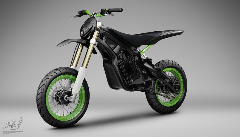 Project JUNIOR Electric Bike Carbon denseL 8