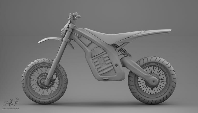 Project JUNIOR Electric Bike Carbon denseL 2
