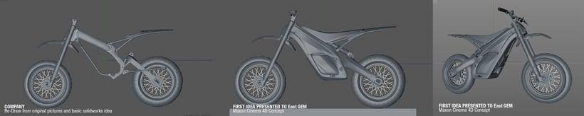 Project JUNIOR Electric Bike Carbon denseL 10