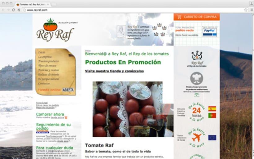 Página Web Corporativa y Tienda Online Rey Raf -1