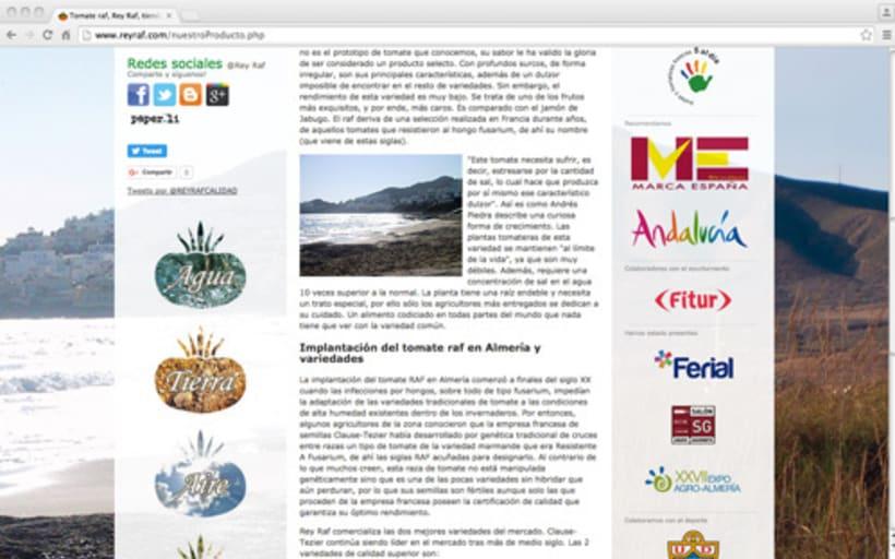 Página Web Corporativa y Tienda Online Rey Raf 0