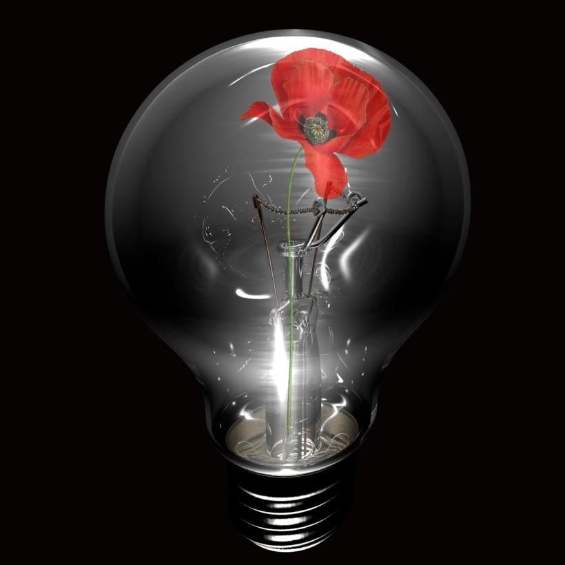 The Opium Bulb -1