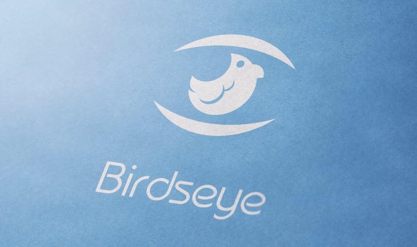 BirdsEye | Branding | Logotipo -1