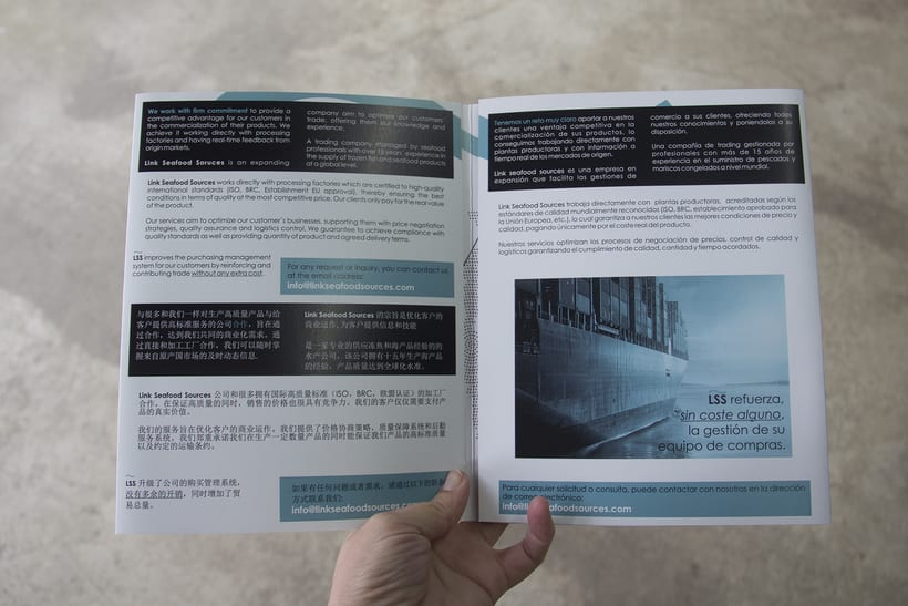 BRANDING | catalogo corporativo Lins seafood sources 1